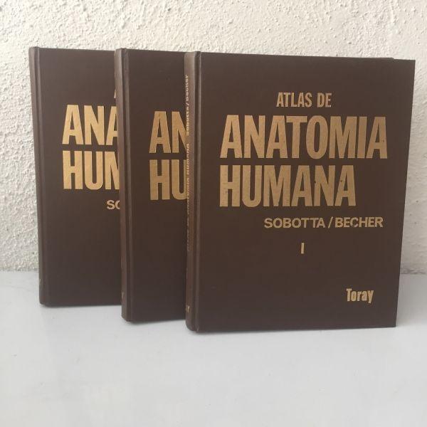 Atlas de Anatomía Humana 3 Volúmenes