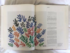 Matisse, Pierre Schneider, Thames and Hudson, 1984