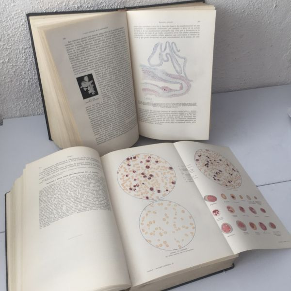 Tratado de Anatomía Patológica I y II, L. Aschoff