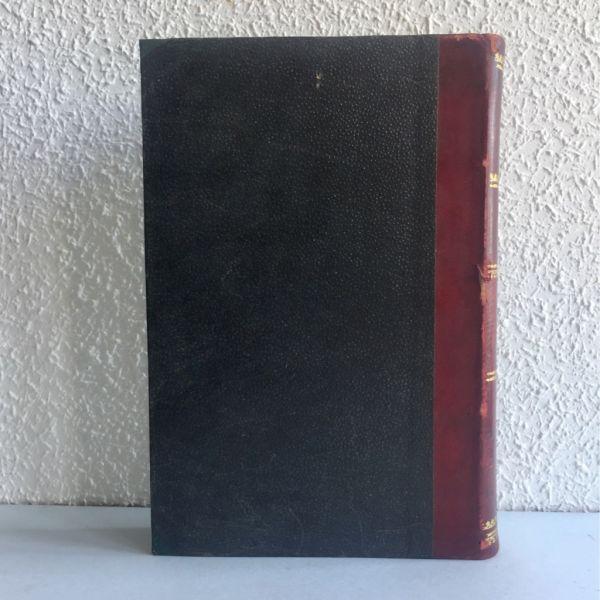 Estudio de los principios activos, Noguera 1901