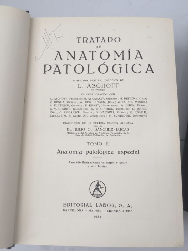 L. Aschoff Tomo II
